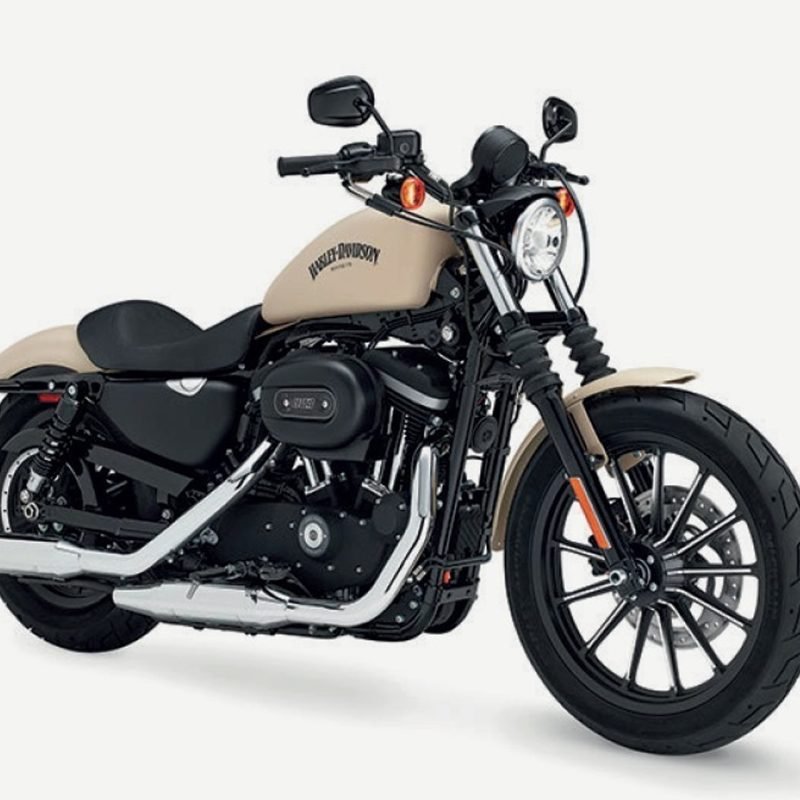 Harley-Davidson Iron 883 Beige